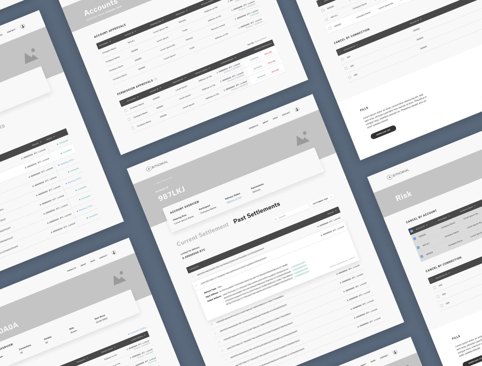 Bitnomial web design wireframes